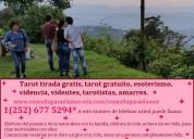 252-677-5294 consultas para el amor