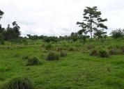 Vendo finca en darien, panamá de 165 hectáreas a 990,000 dolares