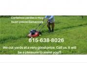 """""corte de cesped""""""yard service at a very good pr"