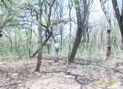 Vendo campo 8700 hectáreas en argentina