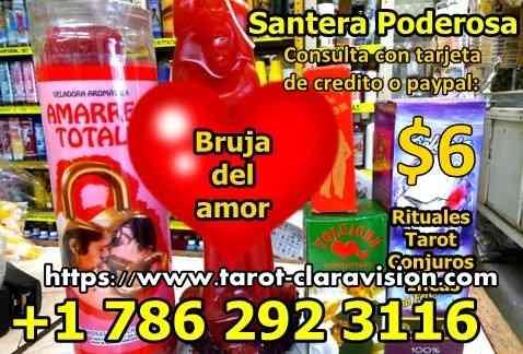 Psiquica Clara Tarot Del Amor
