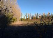 Vendo 10 hectareas con viña argentina u$s 95.000