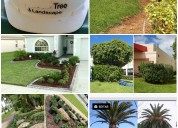 Deleon tree & landscaping