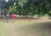 Venta de lotes en masaya *oferta de terrenos*