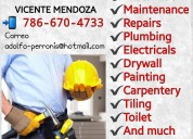Professional handyman  vicente