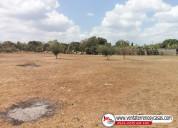 Parcelas terrenos en masaya